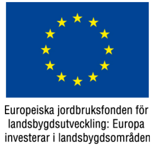 Detta projekt är finansierat med stöd från EU